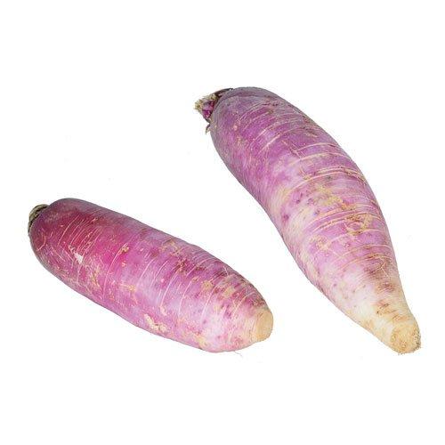 le-roux-specialiste-legumes-bretons